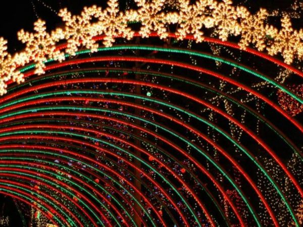 Lovely 2017 Holiday Light Festival Train: Griffith Park, Los Angeles Awesome Design