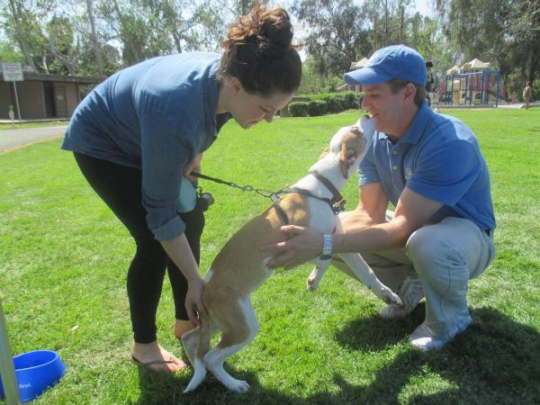 Mar 18 Helpful Honda Pet Adoption Comes To San Jacinto On March 18th Banning Beaumont Ca Patch