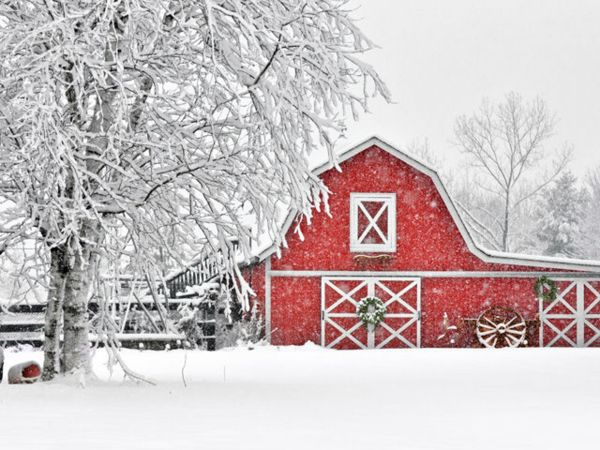 Nov 18 38th annual christmas in the country craft show for Country christmas craft show