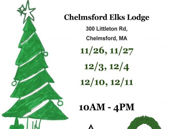 boy scout christmas trees amherst ma real estate