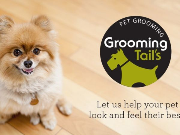 May 31 grooming tails in vernon now open vernon ct patch grooming tails in vernon now open pet valu solutioingenieria Gallery
