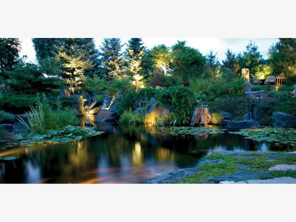 Captivating Aquascape Fall Festival And Nighttime Celebration