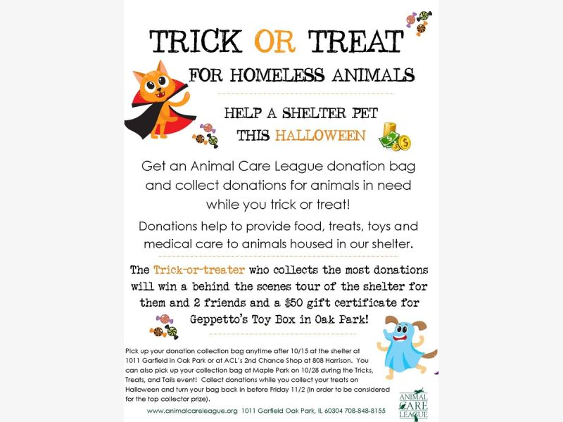 Oct 20 Trick Or Treat For Homeless Animals Oak Park River