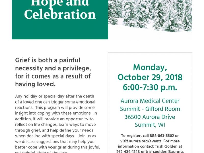 Oct 29 Healing Hope Celebration Grief Support Group Waukesha Wi Patch
