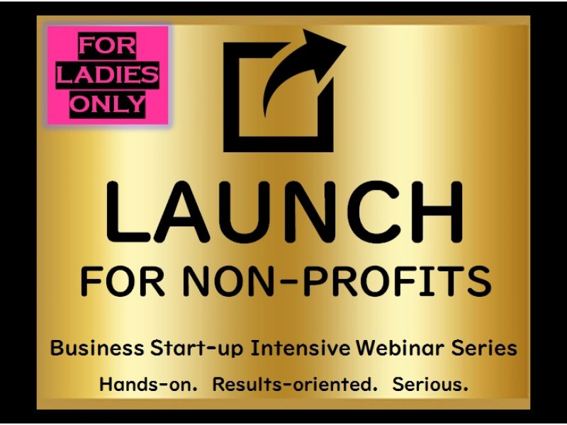 LAUNCH for Non-profit Lady Bosses Webinar Series (nationwide)